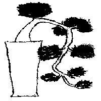 bonsai_style_en_cascade
