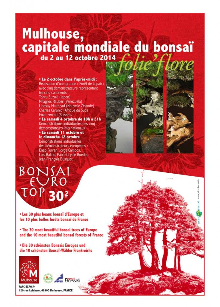bonsai-euro-top-30-blog-ebonsai