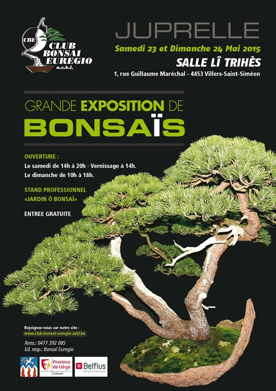 expo_bonsai_juprelle_2015