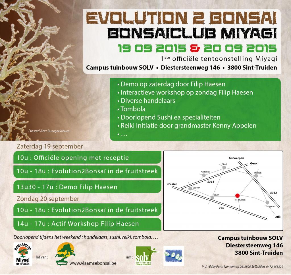 evolution_2_bonsai_club