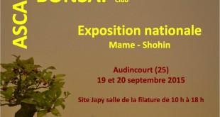 expo-bonsai-shohin-mame-2015