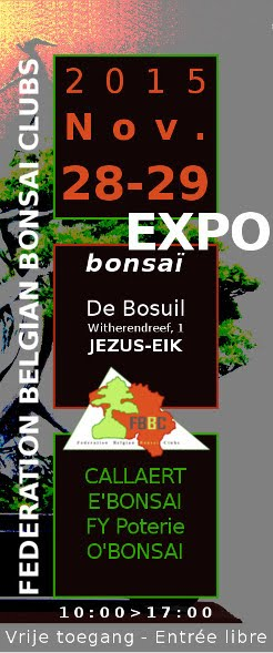 Expo_bonsai_FBBC_Overijse_28-29-11-2015