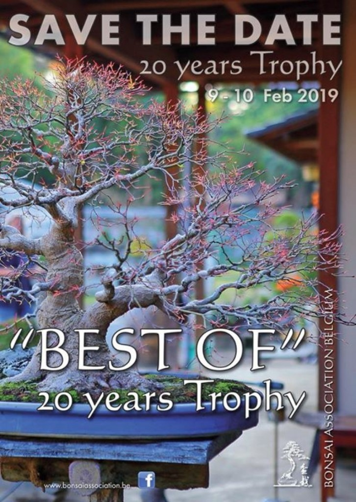 Best of 20 years Trophy - Noelanders Trophy Bonsai Exposition 2019